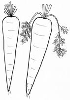 Disegni Di Verdure Da Colorare Cose Per Crescere