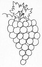 Frutta Da Colorare Cose Per Crescere