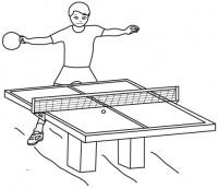 Pingpong1 - Il tavolo da disegno ...