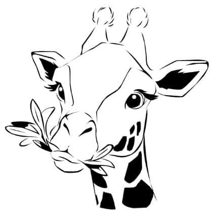 Zarafa La Giraffa Giramondo Cose Per Crescere