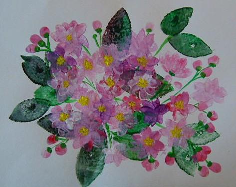 Fiori di ciliegio dipinti cose per crescere for Fiori di ciliegio dipinti
