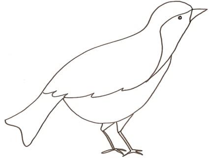 Uccelli di legno
