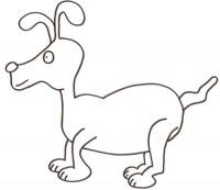 cane-orecchie-lunghe