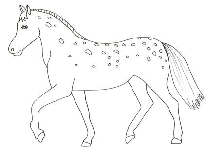 Cavallo pezzato da colorare cose per crescere for Immagini cavalli da disegnare