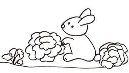 Coniglio insalata for Disegno coniglio per bambini