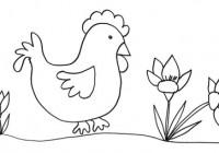 Disegno di gallina che passeggia for Fiori facili da disegnare