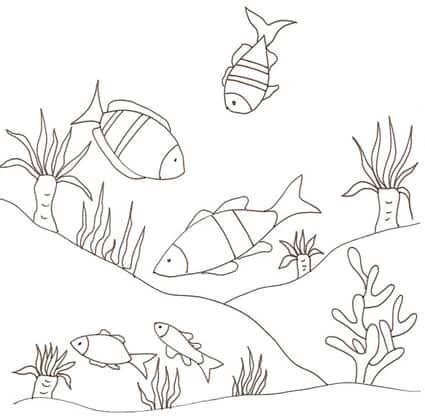 Pesci in fondo al mare da colorare cose per crescere for Pesciolini da colorare e stampare