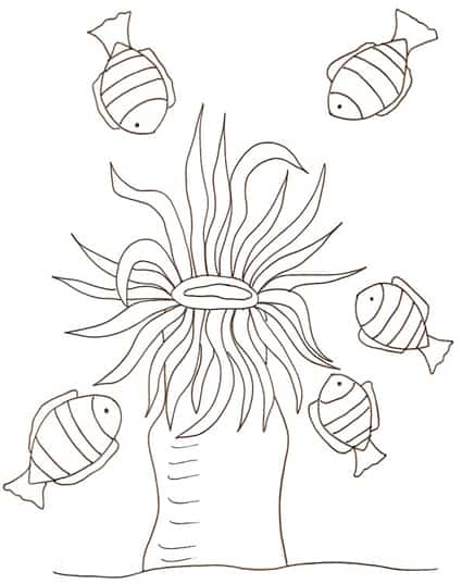 Pesciolini e anemone da colorare cose per crescere for Disegni da colorare pesciolini