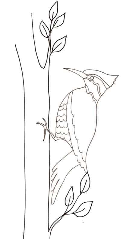 Picchio for Pesci da disegnare per bambini