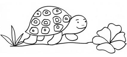 Tartaruga con insalata da colorare cose per crescere for Lepre disegno da colorare