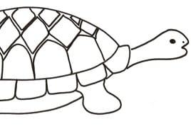 La lepre e la tartaruga favola per bambini for Lepre disegno da colorare