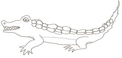 Disegno di coccodrillo cose per crescere for Coccodrillo da colorare