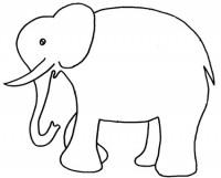 Disegno Di Un Elefante Cose Per Crescere