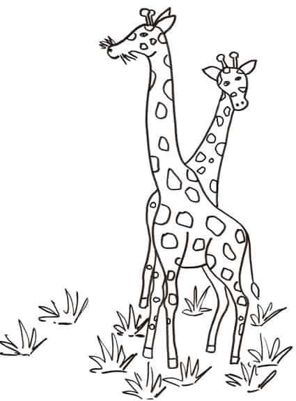 Giraffe Da Colorare Cose Per Crescere