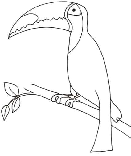 Tucano - Semplici disegni di uccelli ...