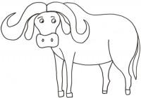 Disegni Di Animali Della Savana Da Colorare Immagini Di Animali