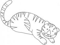 Disegni Di Tigre Da Colorare Cose Per Crescere