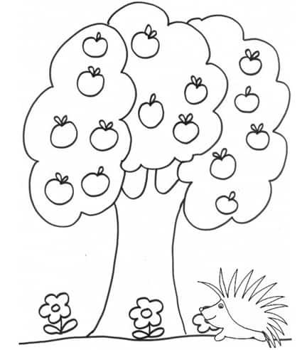 Albero di mele da colorare cose per crescere for Foto di alberi da colorare