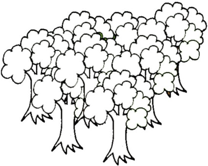 Foresta da colorare cose per crescere for Disegni da colorare animali della foresta