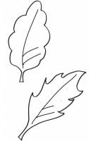 Disegno Di Foglie Cose Per Crescere