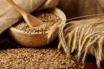 Allergia al grano (o frumento)