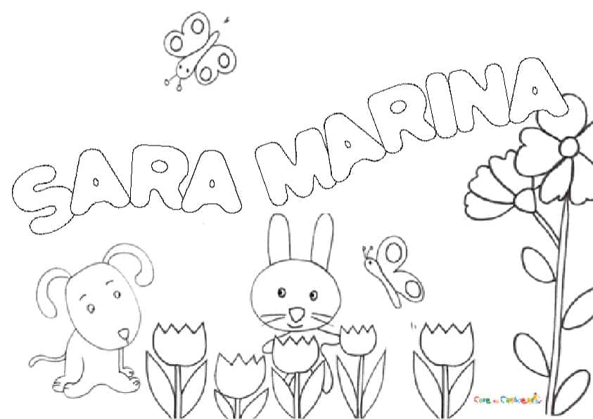 SARA-MARINA