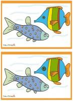 diferenze-pesci