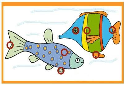 differenze-pesci_sol