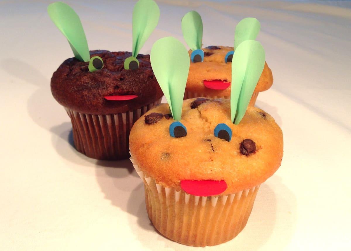 muffin topo