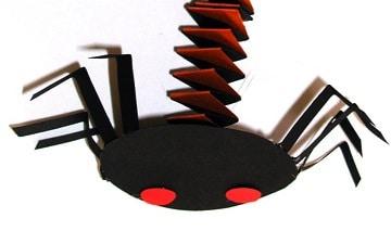 Un ragno di carta