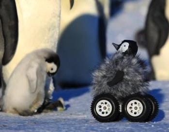 Un giocattolo dimenticato in Antartide?