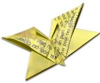 farfalla origami ev