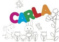 CARLA sig