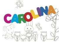 CAROLINA sig