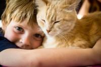 Gatto e bambini