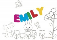 EMILY sig