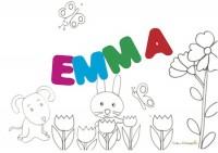 EMMA sig