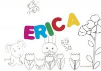 ERICA sig