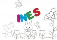 INES sig