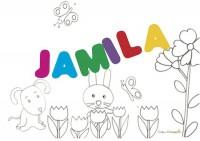 Jamila: significato e onomastico
