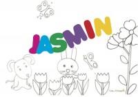 JASMIN sig