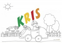 KRIS SIG