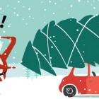 9 italiani su 10 hanno già fatto l'albero di Natale