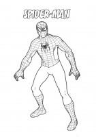 Spider man da colorare