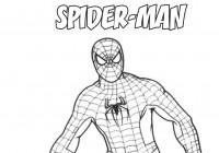 Disegni di spiderman da colorare immagini da stampare for Disegni da colorare di spaiderman