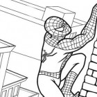 Spider-man che si arrampica da colorare