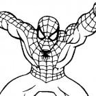 Spider-Man da colorare