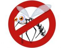 Zika spiegato ai bambini