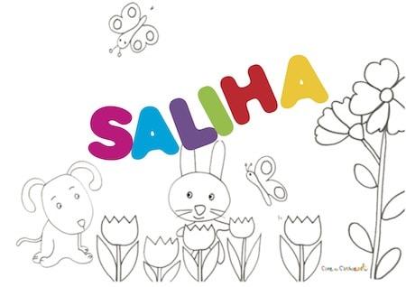 Saliha: significato e origine