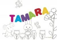 Tamara: significato e onomastico